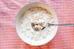 Muesli with milk. Breakfast background, a bowl Muesli with milk Royalty Free Stock Image