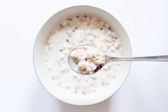 Muesli with milk. Breakfast background, a bowl Muesli with milk Stock Image
