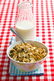 Muesli and milk Royalty Free Stock Photos