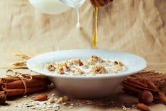 Muesli with milk and honey Stock Image