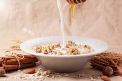 Muesli with milk and honey Royalty Free Stock Image