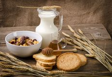 Muesli with milk and rusk. Muesli with low-fat milk and rusk Royalty Free Stock Photos