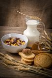 Muesli with milk and rusk Stock Photography