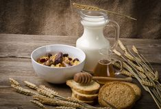 Muesli with milk and rusk Royalty Free Stock Photos