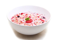 Muesli with milk served in a ceramic bowl. Muesli with milk served in a white ceramic bowl Royalty Free Stock Photo