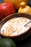 Muesli With Milk Stock Images