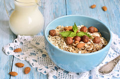 Muesli with nuts. Royalty Free Stock Image