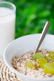 Muesli with oats stock images