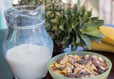 Muesli orgánico significa la nutrición y el grano de la leche Imagen de archivo
