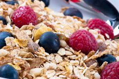 Muesli with Raspberries and Blueberries Stock Image