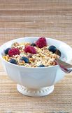 Muesli with Raspberries and Blueberries Royalty Free Stock Image