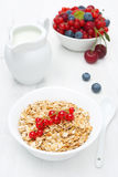 Muesli with red currant, fresh berries and jug of milk. Vertical royalty free stock photography