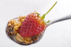 Muesli and strawberry Stock Image