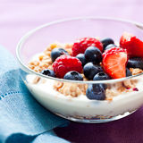 Muesli With Fruits And Yogurt Royalty Free Stock Images