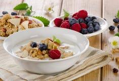 Muesli and yogurt with  berries Stock Photos