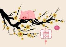 Muestra china feliz 2019 del zodiaco del Año Nuevo con el cerdo Feliz Año Nuevo del medio de los caracteres chinos ilustración del vector