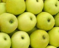 Muestra de alimentos Manzana verde Fotografía de archivo