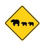 Muestra de camino - travesía del oso Imagen de archivo libre de regalías