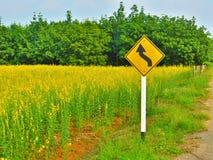 Muestra de carretera con curvas amarilla fotografía de archivo