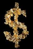 Muestra de dólar Imagen de archivo