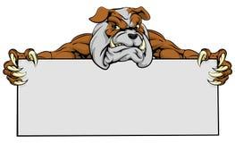 Muestra de la mascota de los deportes del dogo Imagenes de archivo