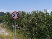 Muestra de la velocidad máxima de 30 kilómetros y de arbustos verdes olivas Foto de archivo