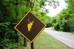 Muestra de los ciervos Foto de archivo libre de regalías