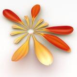 Muestra de los pequeños pétalos del Gerbera Imagen de archivo libre de regalías