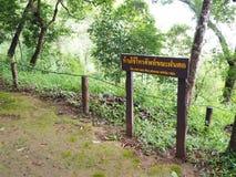 Muestra de madera en el parque nacional en la advertencia de Tailandia de utilizar p móvil Imagen de archivo
