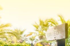 Muestra de madera de la playa con las palmas Foto de archivo