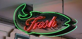 Muestra de neón de los pescados frescos Imagen de archivo libre de regalías