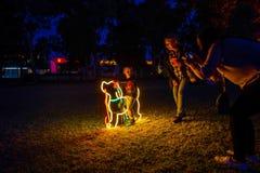 Muestra de neón del parque del perro foto de archivo libre de regalías