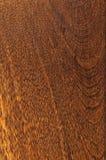 Muestra de suelo preacabada de madera dura Imágenes de archivo libres de regalías