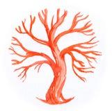 Muestra del árbol Imagen de archivo libre de regalías
