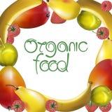 Muestra del alimento biológico Ilustración del vector Foto de archivo libre de regalías