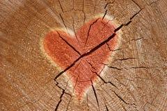 Muestra del corazón fotografía de archivo libre de regalías