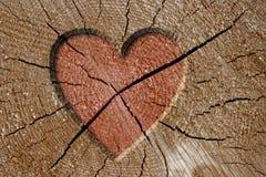 Muestra del corazón Fotos de archivo libres de regalías