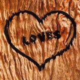 Muestra del corazón del amor Imagen de archivo libre de regalías