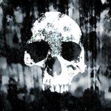 Muestra del cráneo en la pared sucia vieja Muestra del peligro Ejemplo monocromático del vintage del grunge stock de ilustración