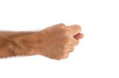Muestra del higo (snook) aislada Imagen de archivo