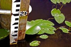 Muestra del nivel del agua Foto de archivo libre de regalías