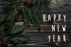 Muestra del texto de la Feliz Año Nuevo en endecha plana del invierno elegante con el anís c Imágenes de archivo libres de regalías