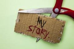 Muestra del texto que muestra mi historia Cartera conceptual del perfil de la historia personal del logro de la biografía de la f fotos de archivo