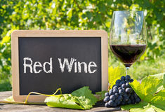 Muestra del vino rojo con las uvas Fotos de archivo libres de regalías