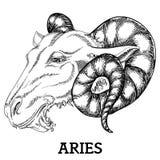 Muestra del zodiaco del aries Fotografía de archivo