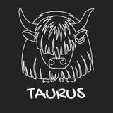 Muestra del zodiaco del tauro para el horóscopo en el vector EPS8 fotografía de archivo libre de regalías