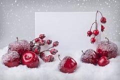 Muestra en blanco con las decoraciones rojas de la Navidad foto de archivo