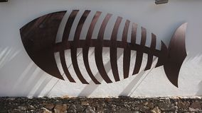 Muestra esquelética de los pescados en la pared blanca Foto de archivo