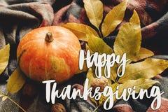 Muestra feliz del texto de la acción de gracias en la calabaza de otoño con el pasto colorido Foto de archivo