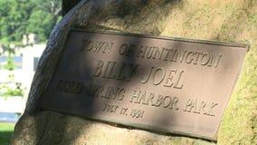Muestra fría del parque del puerto de la primavera con Billy Joel (1 de 2) almacen de metraje de vídeo